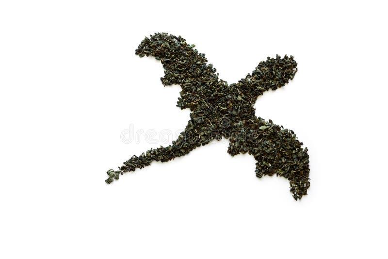Δράκος που γίνεται από το ξηρό πράσινο τσάι στο άσπρο υπόβαθρο Έννοια ελάχιστης, δημιουργικής ή τέχνης τροφίμων r r στοκ εικόνες