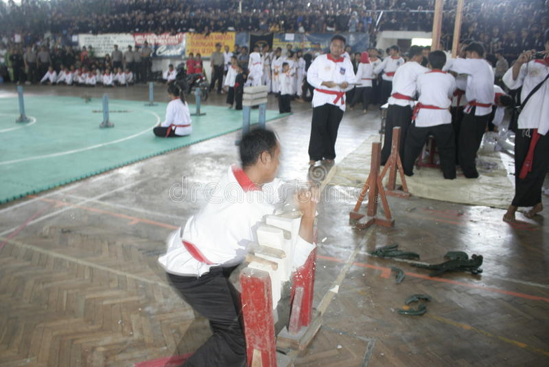 Download Δράση Silat Pencak εκδοτική φωτογραφία. εικόνα από regency - 62712267