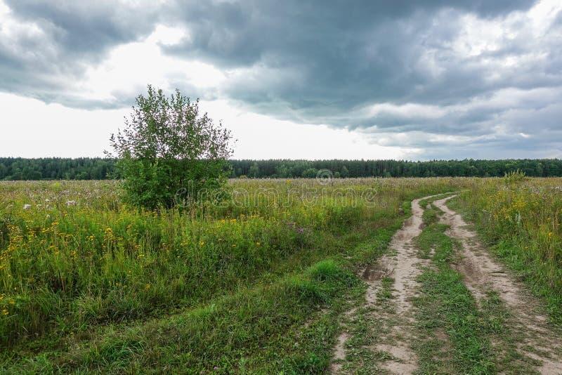 Δραματικό τοπίο επαρχίας με τα thunderclouds στον ουρανό πέρα από έναν τομέα σίτου εθνική οδός στον τομέα στοκ εικόνες με δικαίωμα ελεύθερης χρήσης