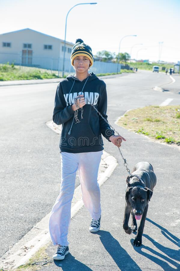 Δραστηριότητες για την καλή μεταχείριση των ζώων στο Cape Town Νότια Αφρική στοκ φωτογραφία