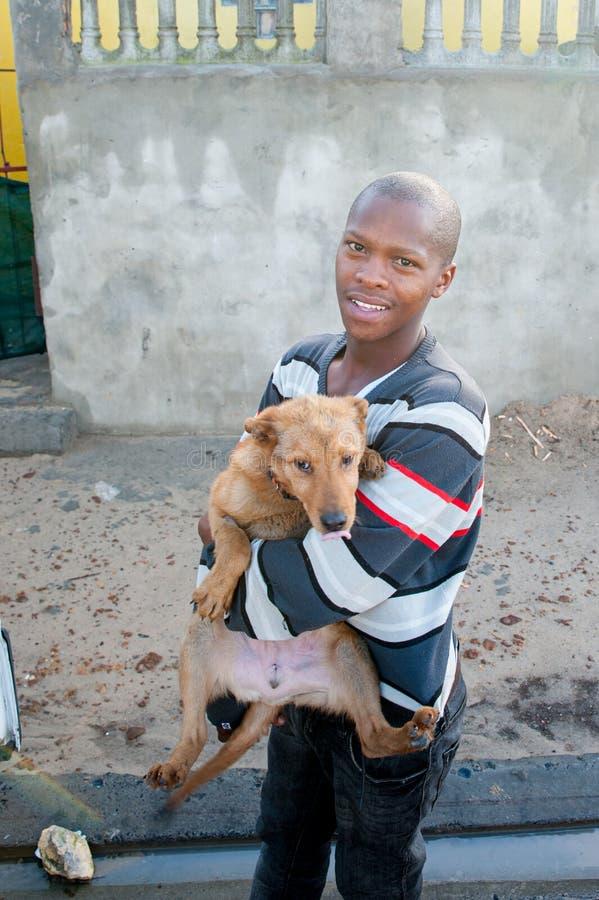 Δραστηριότητες για την καλή μεταχείριση των ζώων στο Cape Town Νότια Αφρική στοκ εικόνα