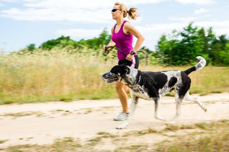 Δρομέας γυναικών που τρέχει, σκυλί περπατήματος στη θερινή φύση στοκ φωτογραφία
