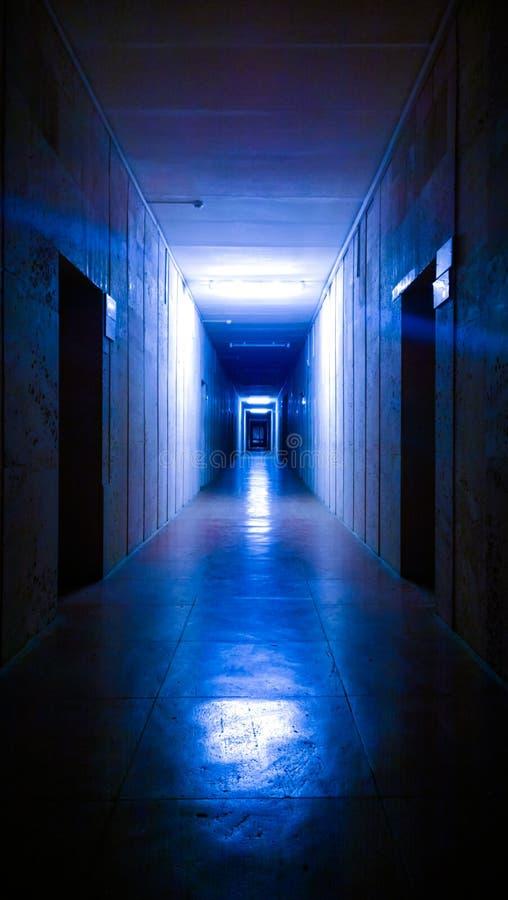 Δρομέας νύχτας στοκ φωτογραφία με δικαίωμα ελεύθερης χρήσης