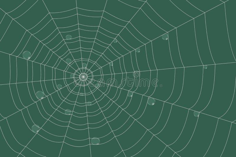 Δροσιά σε ένα πλέγμα του ομόκεντρου ιστού αράχνης στο πράσινο υπόβαθρο ελεύθερη απεικόνιση δικαιώματος