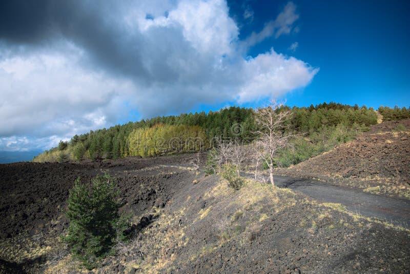Δροσισμένος τομέας λάβας και φθινοπωρινό μικτό δάσος Etna στο πάρκο στοκ φωτογραφίες με δικαίωμα ελεύθερης χρήσης