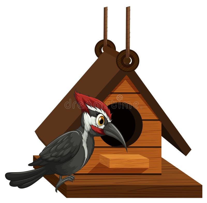 Δρυοκολάπτης που στέκεται στο birdhouse ελεύθερη απεικόνιση δικαιώματος