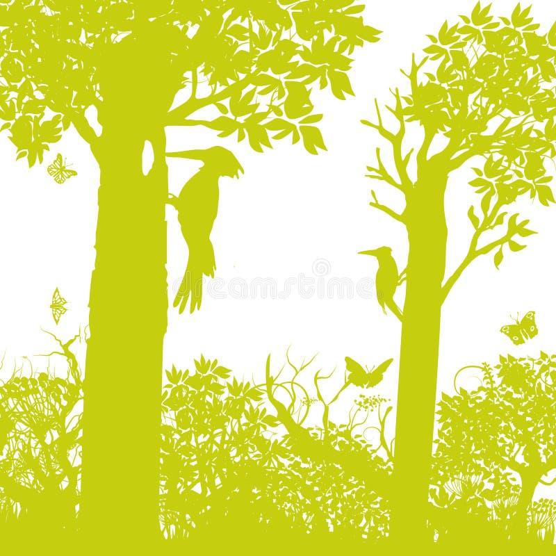 Δρυοκολάπτης στο δάσος διανυσματική απεικόνιση