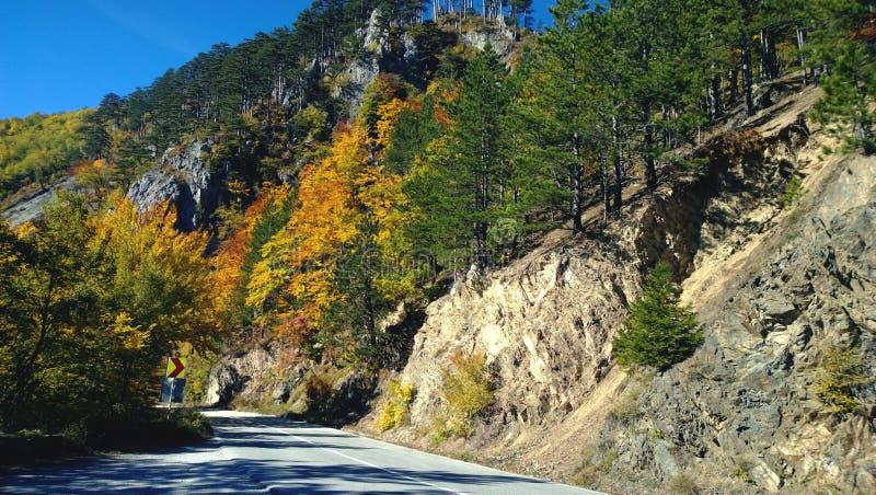 Δρόμος ασφάλτου βουνών πρίν γυρίζει στη Σερβία Λαμπρά χρωματισμένο φθινόπωρο στοκ φωτογραφία