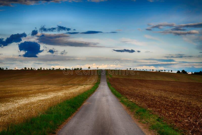 Δρόμος ασφάλτου με τον ορίζοντα που καλύπτεται με τα δέντρα το βράδυ Τομέας γεωργίας Croped Σκοτεινό σύννεφο, μπλε ουρανός στοκ φωτογραφίες με δικαίωμα ελεύθερης χρήσης