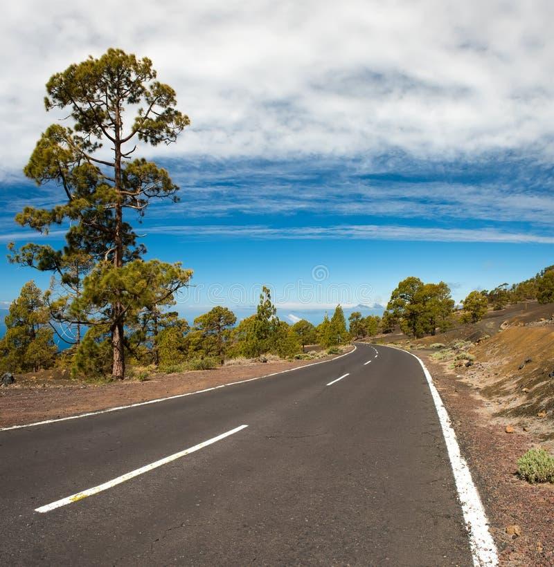 Δρόμος ασφάλτου στην ηφαιστειακή έρημο Tenerife, καναρίνι στοκ εικόνα με δικαίωμα ελεύθερης χρήσης