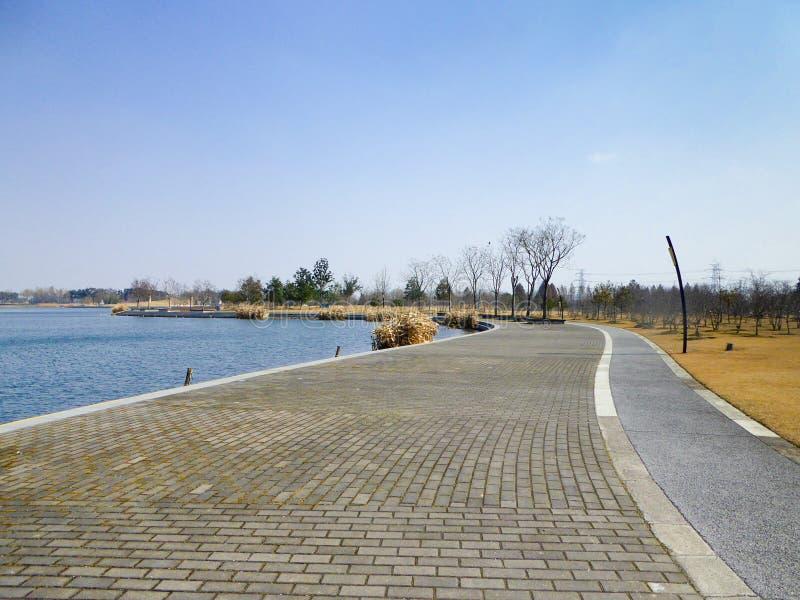 Δρόμος βοτανικών κήπων της Σαγκάη Chen Shan στοκ εικόνες με δικαίωμα ελεύθερης χρήσης