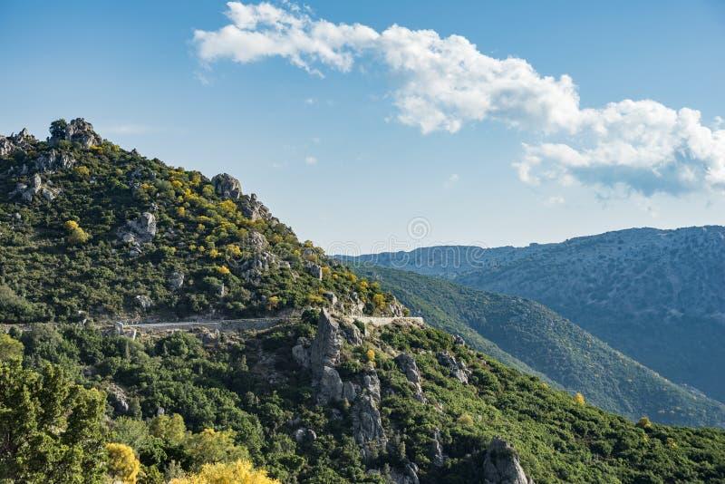 Δρόμος βουνών με τα πράσινα δέντρα, Strada Statale 125, Ogliastra, Σαρδηνία, Ιταλία στοκ φωτογραφία με δικαίωμα ελεύθερης χρήσης