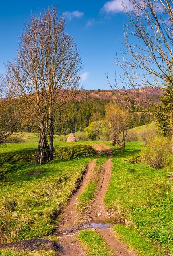 Δρόμος επαρχίας μέσω της αγροτικής περιοχής στα βουνά στοκ φωτογραφία με δικαίωμα ελεύθερης χρήσης