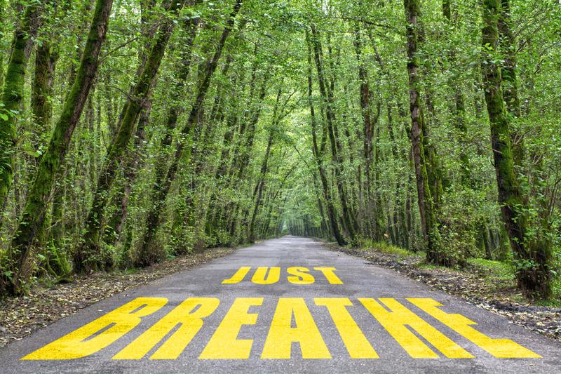 Δρόμος ζουγκλών για να αναπνεύσει ακριβώς στοκ εικόνες