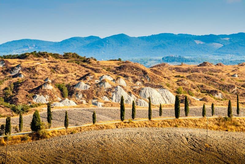 Δρόμος και κυπαρίσσια στην Τοσκάνη στοκ εικόνες