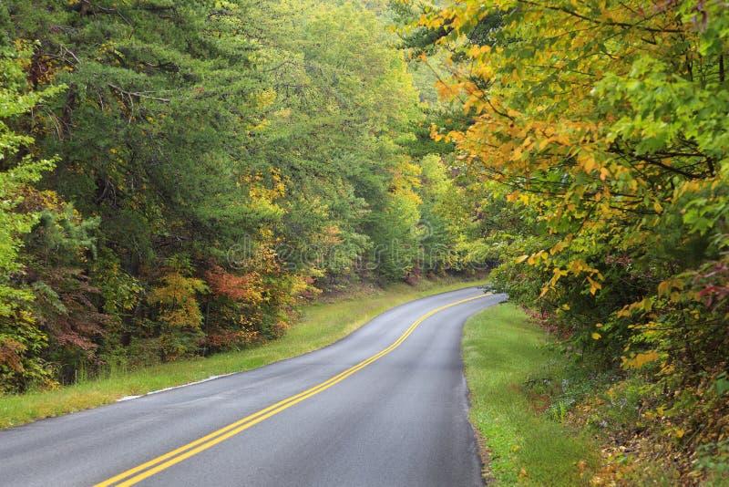 Δρόμος καμπυλών το φθινόπωρο στοκ φωτογραφίες