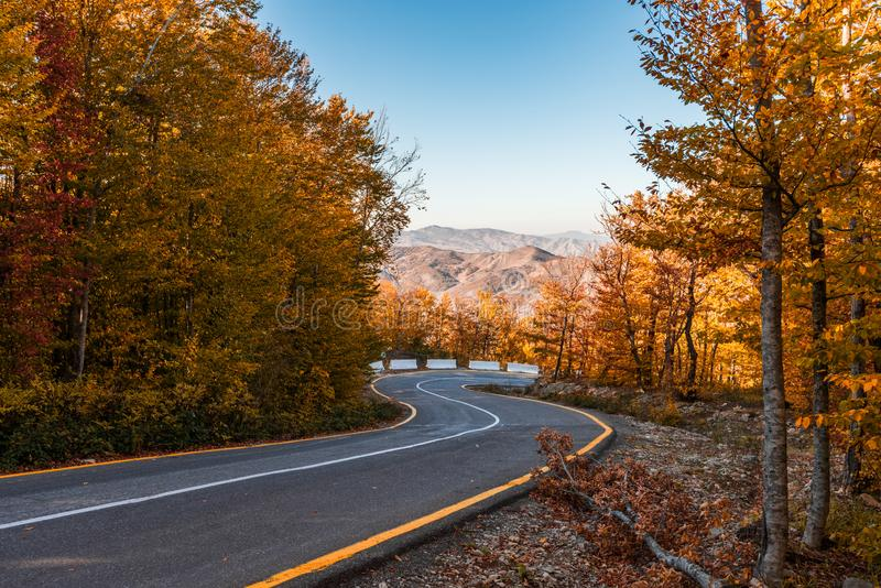 Δρόμος με πολλ'ες στροφές στο ζωηρόχρωμο δάσος βουνών φθινοπώρου στοκ εικόνα με δικαίωμα ελεύθερης χρήσης