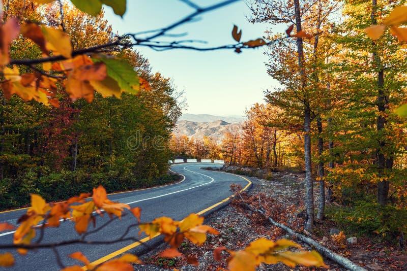 Δρόμος με πολλ'ες στροφές στο ζωηρόχρωμο δάσος βουνών φθινοπώρου στοκ φωτογραφίες με δικαίωμα ελεύθερης χρήσης