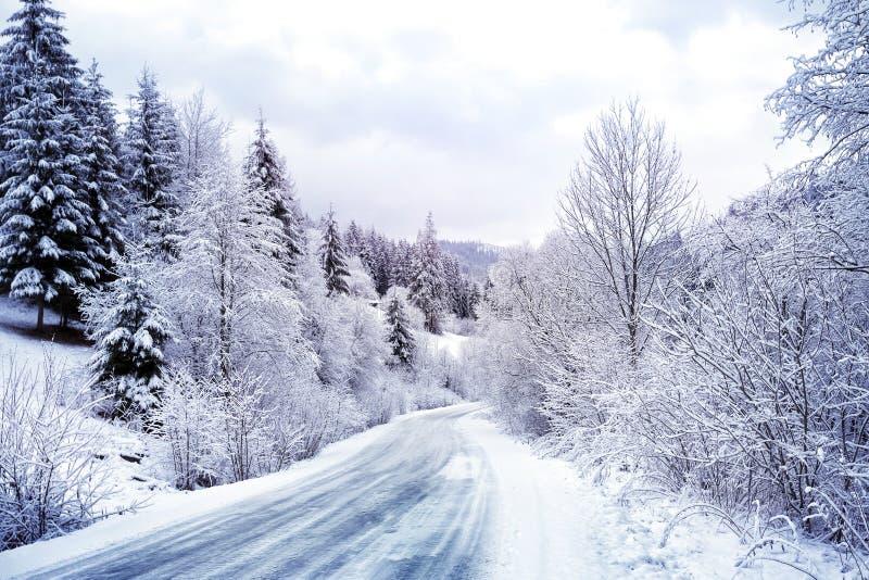 Δρόμος με πολλ'ες στροφές στο χιονώδες δάσος στοκ φωτογραφίες
