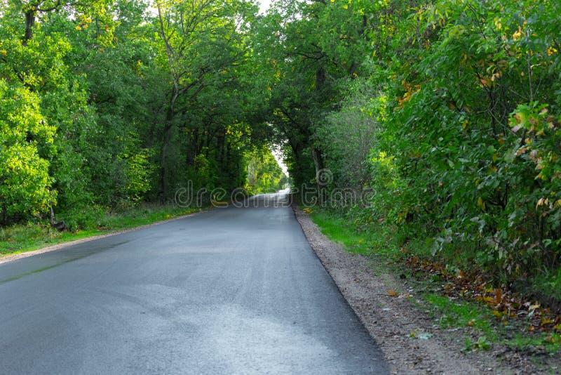 Δρόμος πεζοδρομίων που προχωρά κατ' ευθείαν στοκ εικόνα