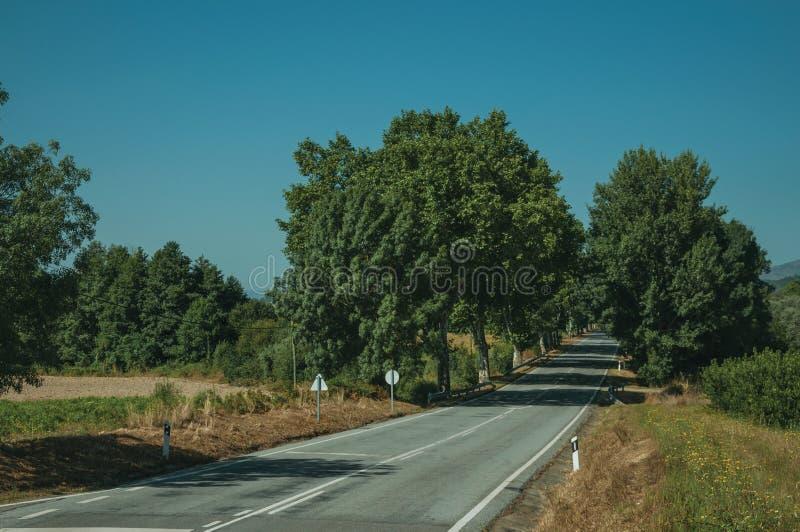 Δρόμος που περνά μέσω του αγροτικού τοπίου στοκ εικόνα