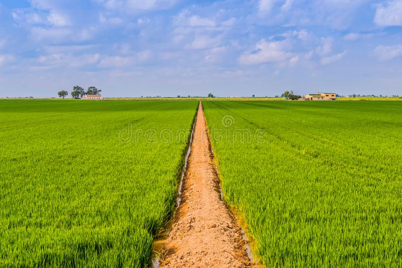 Δρόμος σε ένα πεδίο στοκ εικόνες