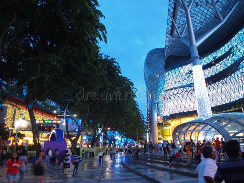 Δρόμος Σινγκαπούρη οπωρώνων στοκ εικόνες