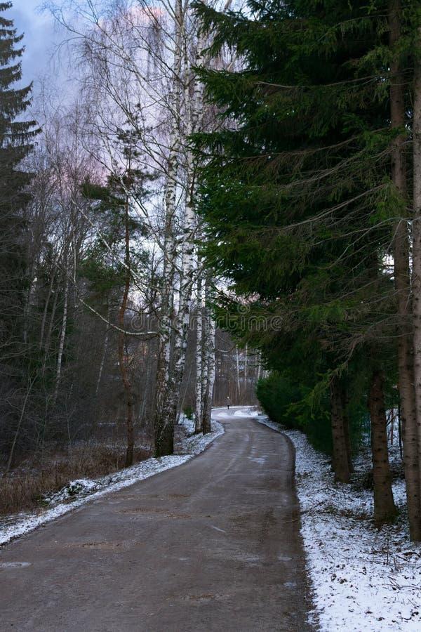 Δρόμος στην απόσταση Χειμερινή σιωπή Στο δρόμο πηγαίνετε πρόσωπο στοκ εικόνες