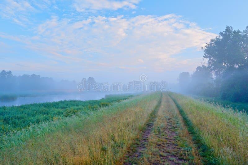 Δρόμος στην ομίχλη. Μυστήριο τοπίο. στοκ εικόνες με δικαίωμα ελεύθερης χρήσης