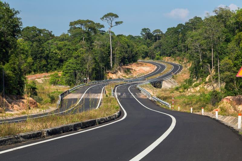Δρόμος στη ζούγκλα στοκ φωτογραφία