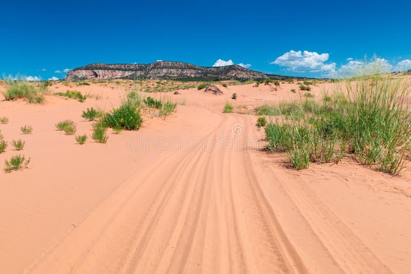 Δρόμος στους αμμόλοφους άμμου της ερήμου, στοκ φωτογραφία με δικαίωμα ελεύθερης χρήσης