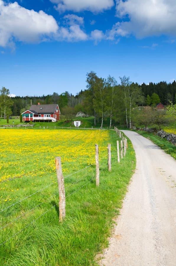 Δρόμος στο αγρόκτημα στοκ εικόνα