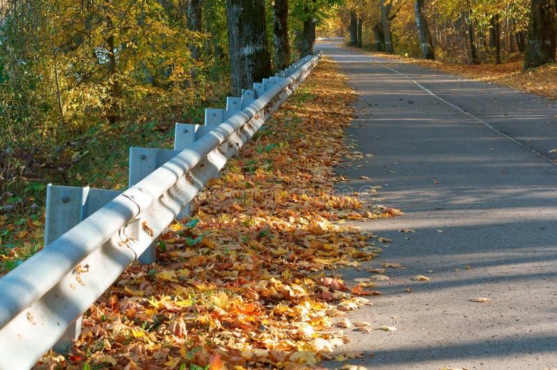Δρόμος στο δάσος το φθινόπωρο, τον οδικό φράκτη και το δάσος φθινοπώρου στοκ εικόνα