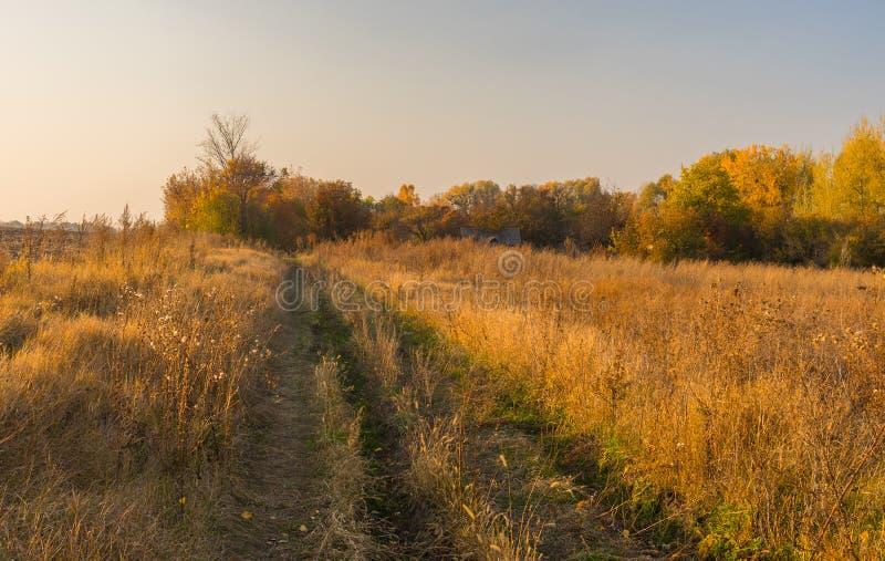 Δρόμος στο εγκαταλειμμένο χωριουδάκι σε Sumskaya oblast, Ουκρανία στοκ φωτογραφίες