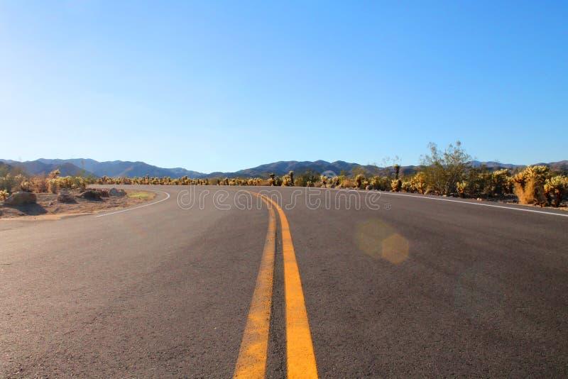 Δρόμος στο εθνικό πάρκο δέντρων του Joshua στη έρημο Μοχάβε Καλιφόρνιας στοκ εικόνες
