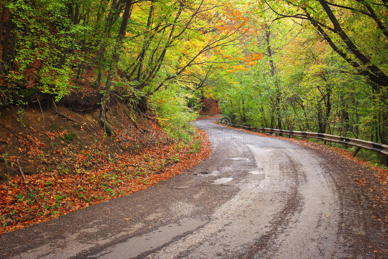 Δρόμος στο ζωηρόχρωμο δάσος φθινοπώρου στοκ εικόνες