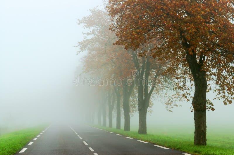 Δρόμος της Misty στοκ εικόνες