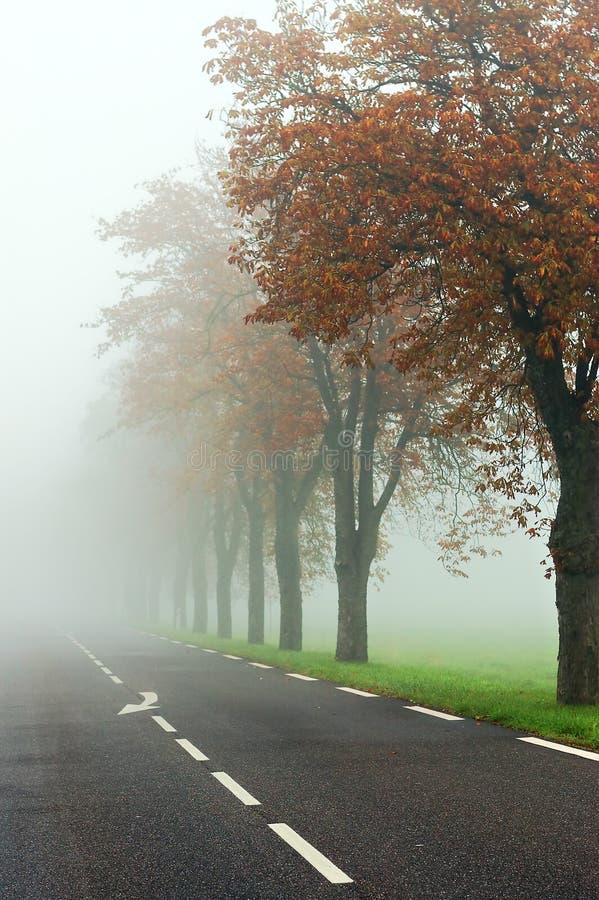 Δρόμος της Misty στοκ φωτογραφία με δικαίωμα ελεύθερης χρήσης