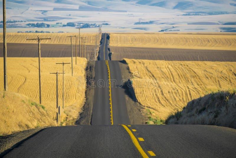 Δρόμος, τομείς σίτου, πολιτεία της Washington στοκ φωτογραφίες