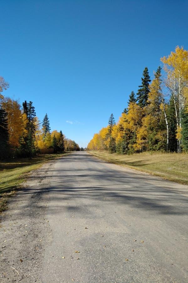 Δρόμος το φθινόπωρο στοκ φωτογραφία