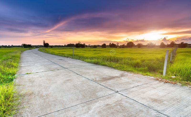 Δρόμος τσιμέντου στον πράσινο τομέα στην πλευρά χωρών στοκ φωτογραφίες