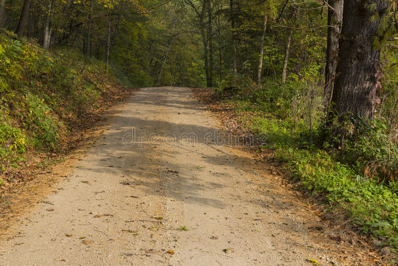 Δρόμος φθινοπώρου στα ξύλα στοκ εικόνες