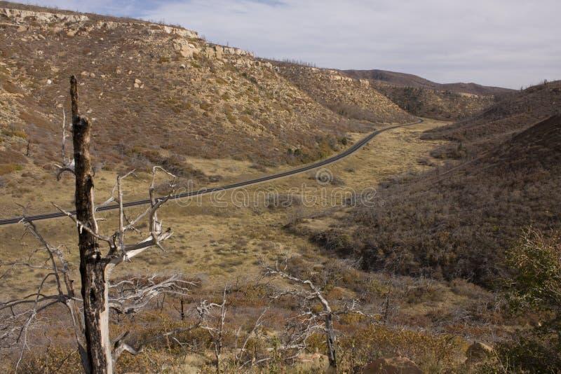 δρόμος mesa verde που τυλίγει στοκ εικόνες