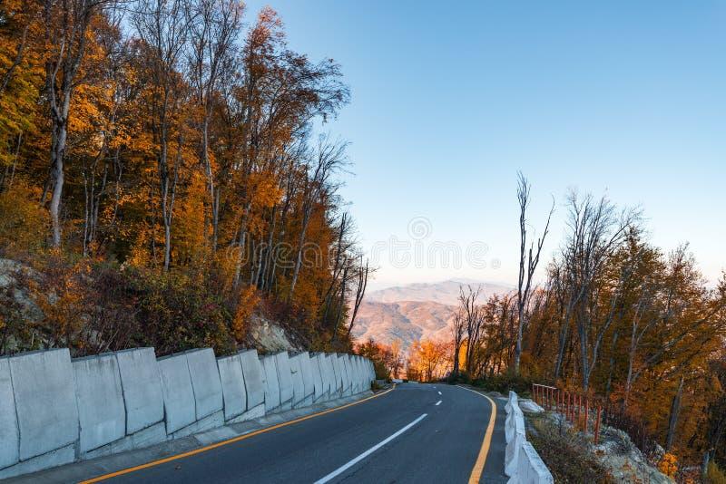 Δρόμος mountainside στοκ φωτογραφίες
