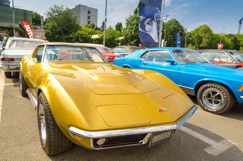 Δρόμωνας Chevrolet Stingray C3 στοκ εικόνες με δικαίωμα ελεύθερης χρήσης