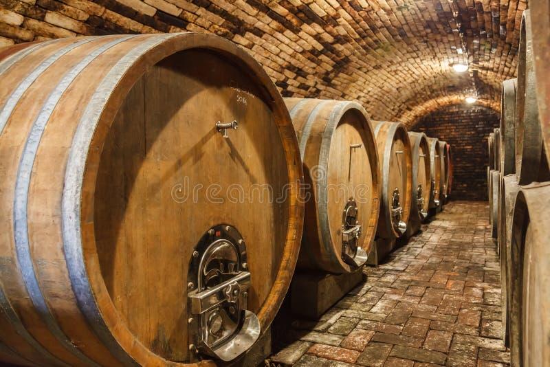 Δρύινα βαρέλια σε ένα υπόγειο κελάρι κρασιού στοκ εικόνα με δικαίωμα ελεύθερης χρήσης