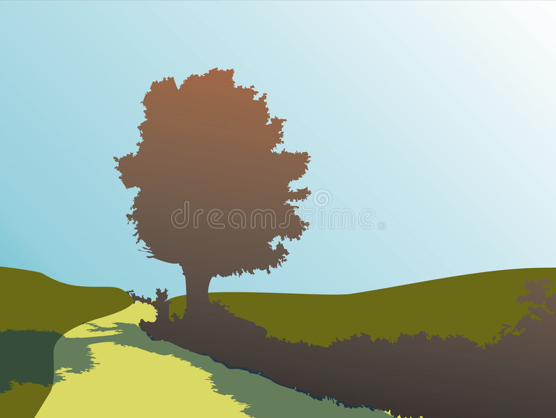 δρύινο δέντρο σκιαγραφιών διανυσματική απεικόνιση