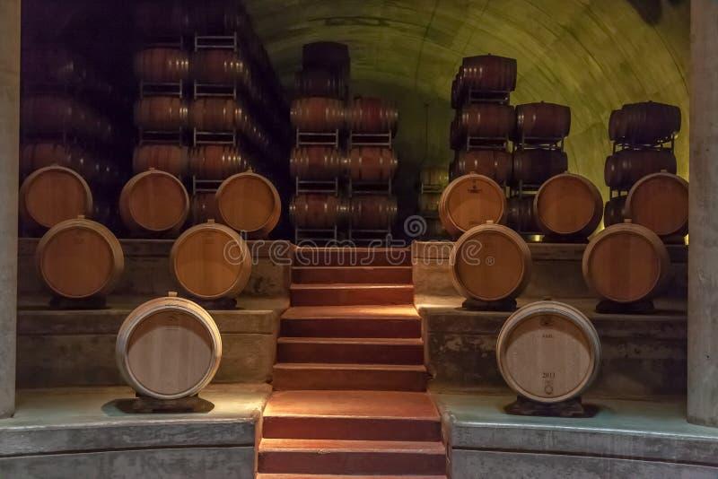 δρύινο κρασί mendoza βαρελιών της Αργεντινής στοκ εικόνα