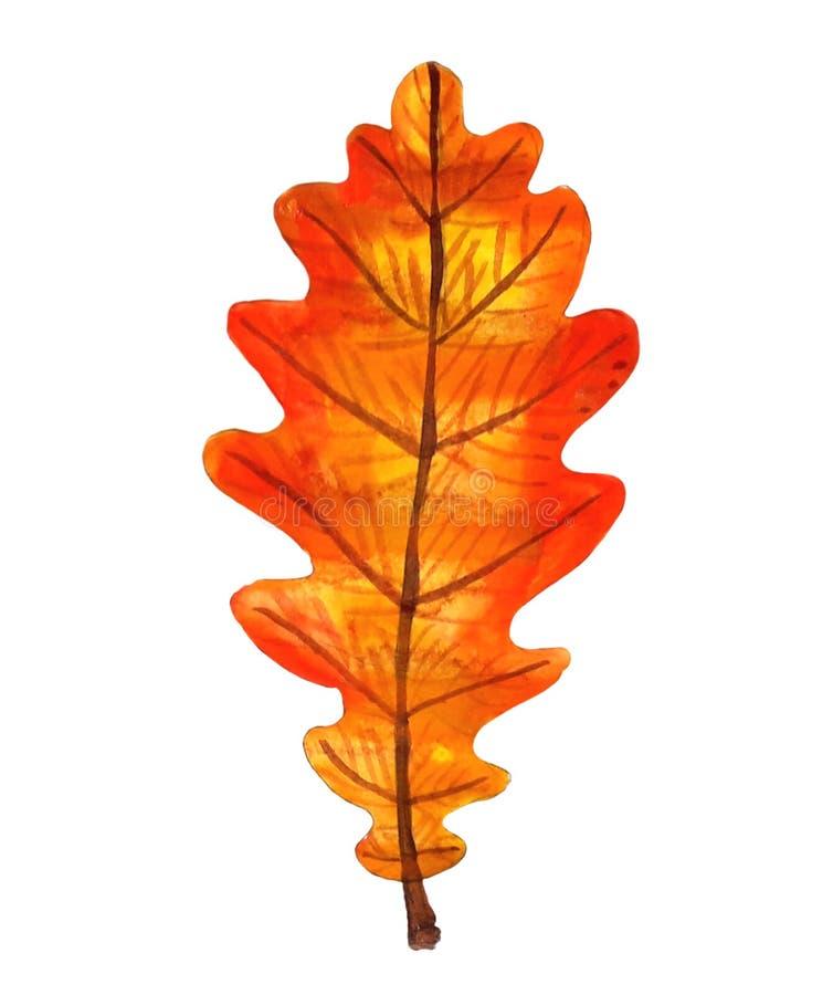 Δρύινο φύλλο watercolor φθινοπώρου πορτοκαλί στοκ φωτογραφία με δικαίωμα ελεύθερης χρήσης