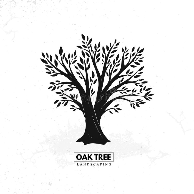 Δρύινο όμορφο δέντρο ελεύθερη απεικόνιση δικαιώματος